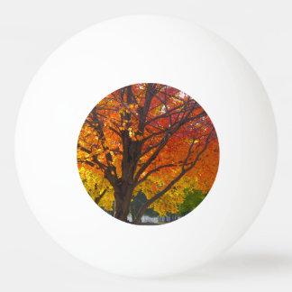 Hojas de otoño de la bola de ping-pong amarilla y pelota de tenis de mesa