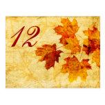 hojas de otoño de la caída que casan la tarjeta tarjetas postales