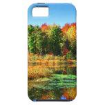 Hojas de otoño de la charca de la puesta del sol iPhone 5 Case-Mate carcasa