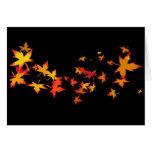 Hojas de otoño de Nueva Inglaterra Tarjeta De Felicitación