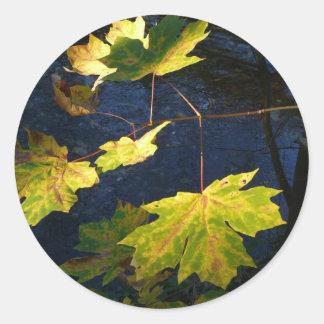 Hojas de otoño de oro devastadas pegatina redonda