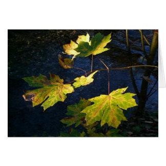 Hojas de otoño de oro devastadas tarjeta de felicitación