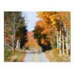 Hojas de otoño del Lake Placid de los altos picos  Tarjetas Postales