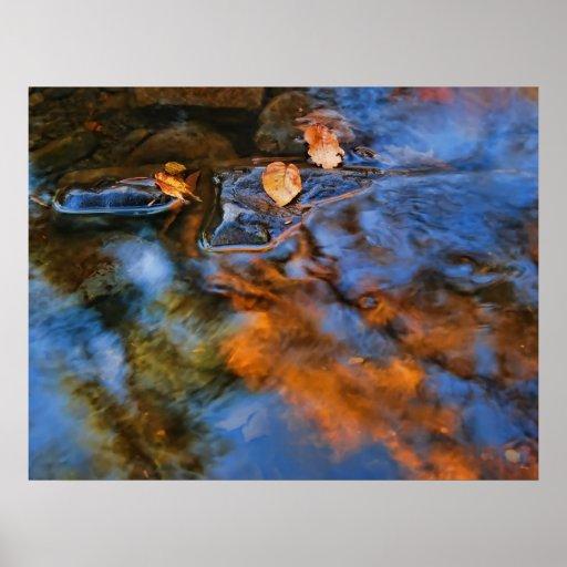 hojas de otoño en agua póster