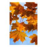 Hojas de otoño en el cielo papelería personalizada