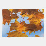 Hojas de otoño en el cielo toallas