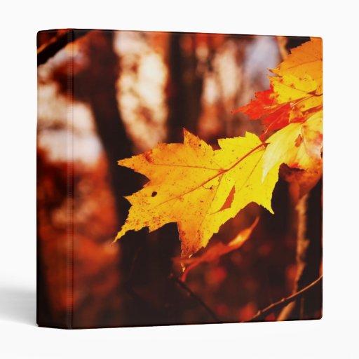 """Hojas de otoño en el Poconos 1"""" álbum de foto"""