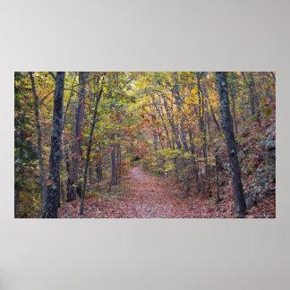 Hojas de otoño en el poster del rastro del barranc