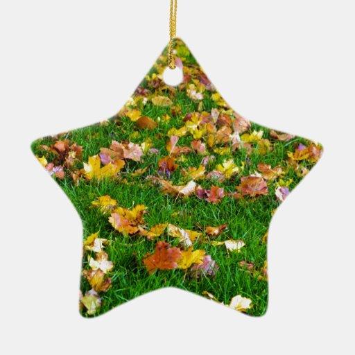 Hojas de otoño en la hierba verde adorno de cerámica en forma de estrella