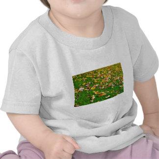 Hojas de otoño en la hierba verde camiseta