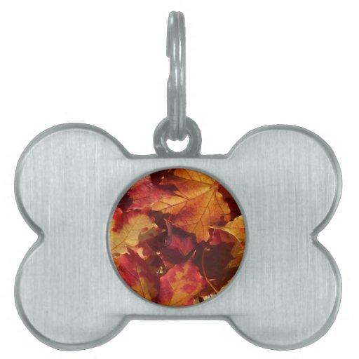 Hojas de otoño estacionales placa de mascota