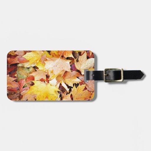 Hojas de otoño etiqueta de maleta