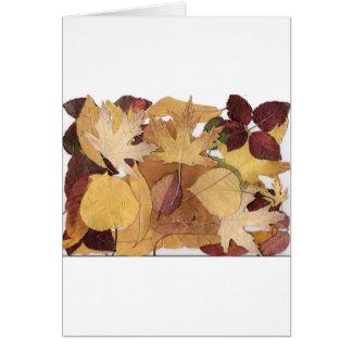Hojas de otoño felicitacion