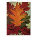 Hojas de otoño felicitación