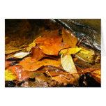Hojas de otoño felicitaciones