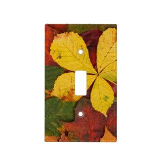 Hojas de otoño, follaje de otoño - rojo amarillo placas para interruptor