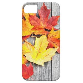 Hojas de otoño funda para iPhone SE/5/5s