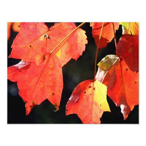 """Hojas de otoño invitación 4.25"""" x 5.5"""""""