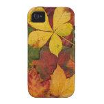 Hojas de otoño iPhone 4 funda