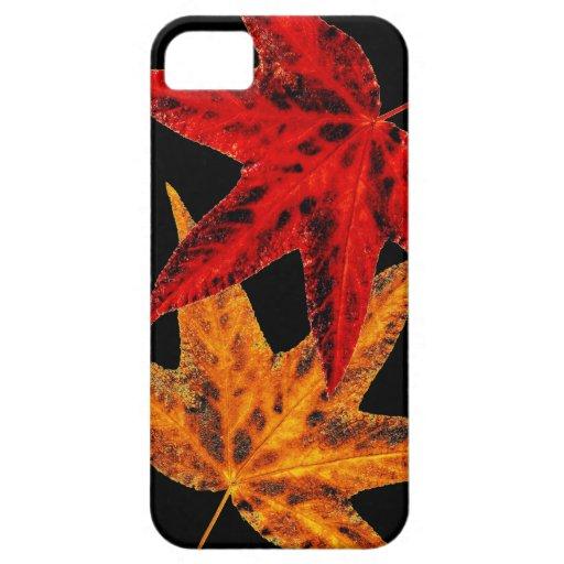 Hojas de otoño iPhone 5 Case-Mate cárcasa