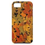 Hojas de otoño iPhone 5 protector