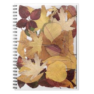 Hojas de otoño libreta