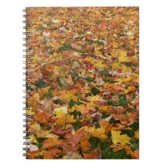 Hojas de otoño libros de apuntes con espiral