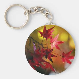 Hojas de otoño llaveros