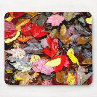 Hojas de otoño Mousepad