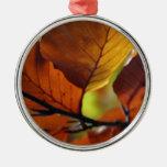 Hojas de otoño ornamente de reyes
