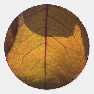 Hojas de otoño pegatina redonda