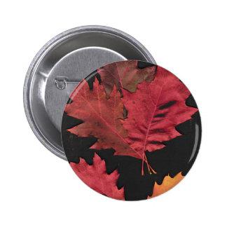 Hojas de otoño pin