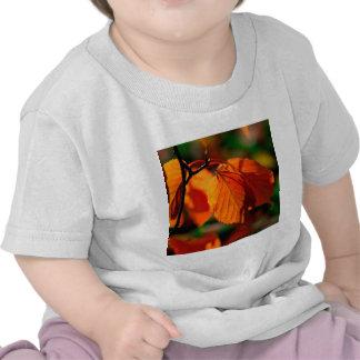 Hojas de otoño camisetas