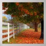 Hojas de otoño poster