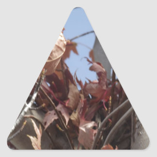 Hojas de otoño que recogen en árbol pegatina triangular