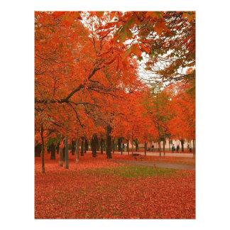 Hojas de otoño rojas del árbol plantillas de membrete