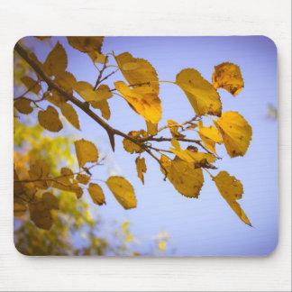 Hojas de otoño tapete de ratón