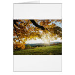 Hojas de otoño tarjeta