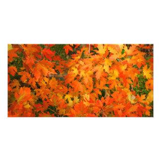 Hojas de otoño tarjetas personales
