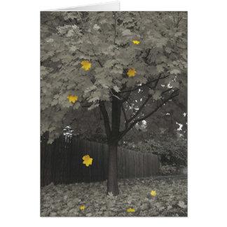 Hojas de otoño tarjeta de felicitación