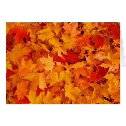Hojas de otoño tarjetas