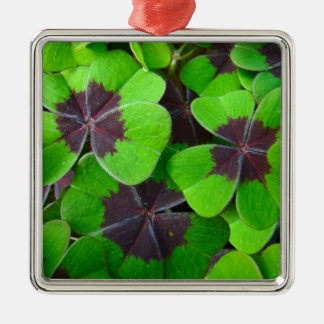Hojas de Oxalis - rojo y verde Adorno Navideño Cuadrado De Metal