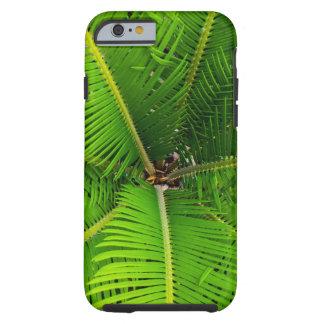 Hojas de palma verdes del primer funda resistente iPhone 6
