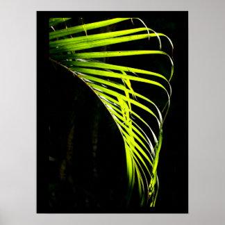 Hojas de palma vivas de la verde lima impresiones