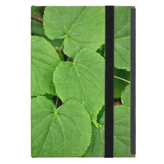 Hojas del árbol de cal iPad mini protectores