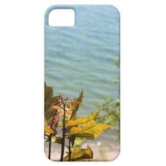 Hojas del árbol delante del agua azul del lago Mic iPhone 5 Coberturas