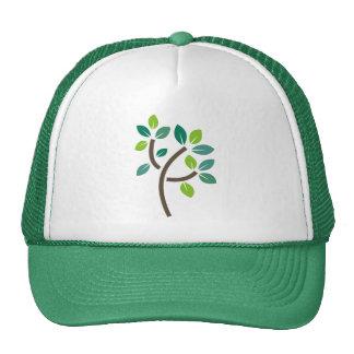 Hojas del árbol gorras