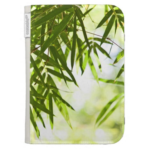 Hojas del bambú