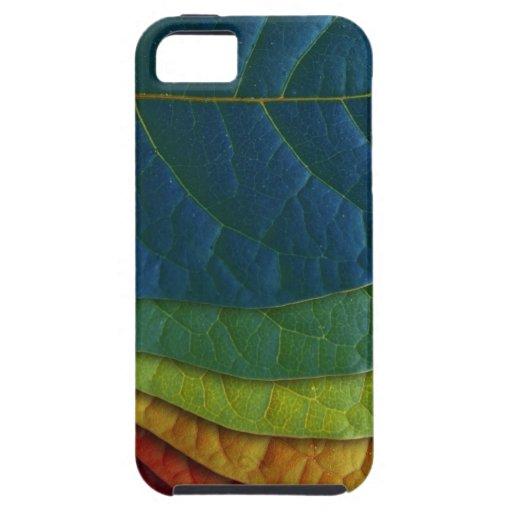 Hojas del color iPhone 5 carcasas