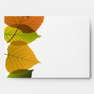hojas del follaje de la opción 2 del sobre 5x7